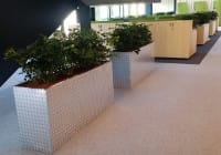 Amenity planting for interiors